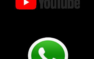 Отправляем видео с YouTube в WhatsApp