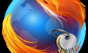 Как экспортировать пароли из браузера Mozilla Firefox