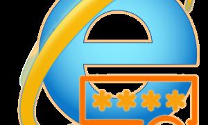 Просмотр сохраненных паролей в браузере Internet Explorer