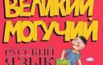 Языковые настройки Skype: смена языка на русский